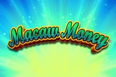 Macaw Money
