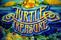Turtle Treasure